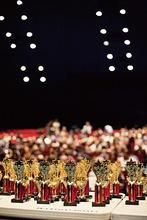025 slvsef 2014 awards