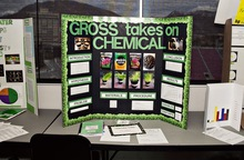 Gross takes on chemicals