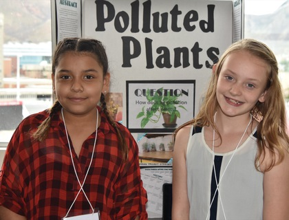 Polluted plants