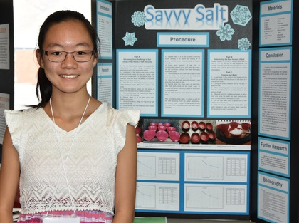 Savvy salt