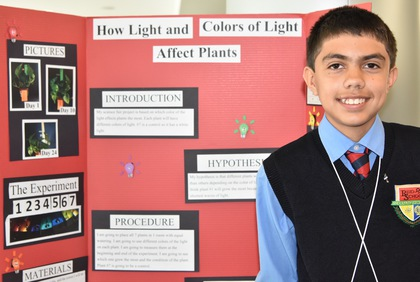 How light and colors of light affect plants