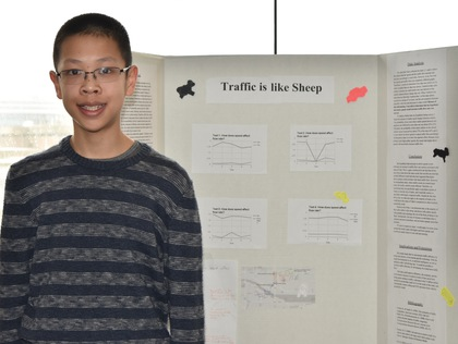 Traffic is like sheep