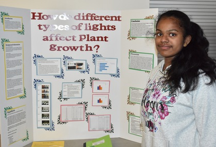 How do different types of lights affect plant growth