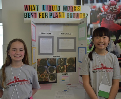 What liquid works best for plant growth