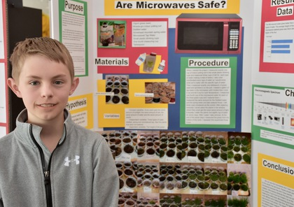 Are microwaves safe