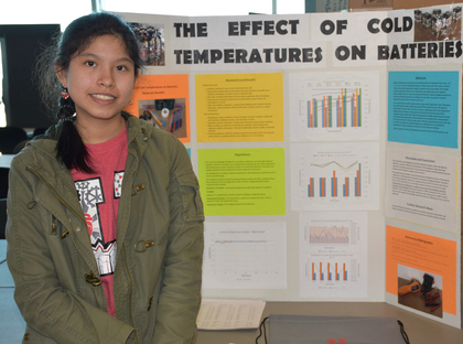 Effect of cold temperatures on batteries