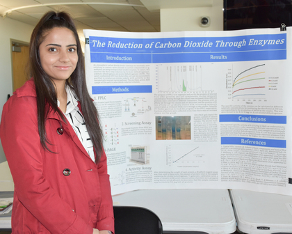 Reduction of carbon dioxide through enzymes