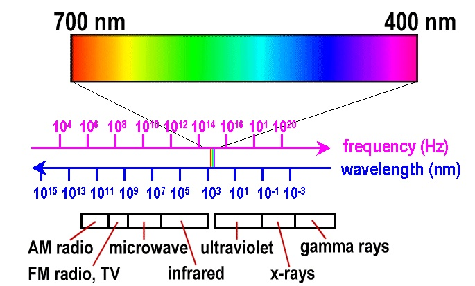 Compare The Size Of Visible Light Spectrum With