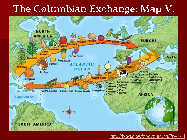 Columbian Exchange #6 - by Maria Williams [Infographic]