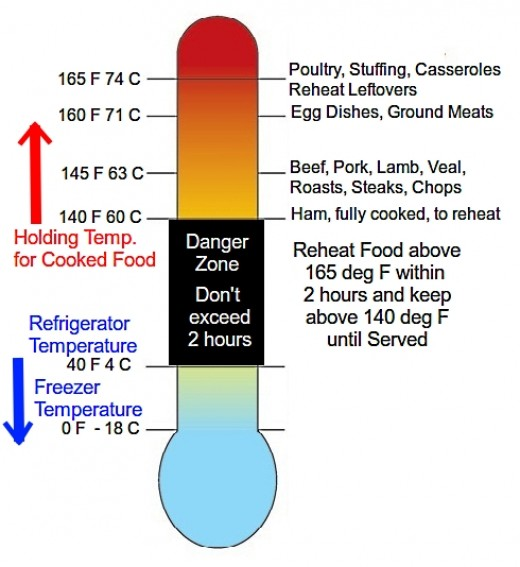 food food safety infographic by wai ling li infographic