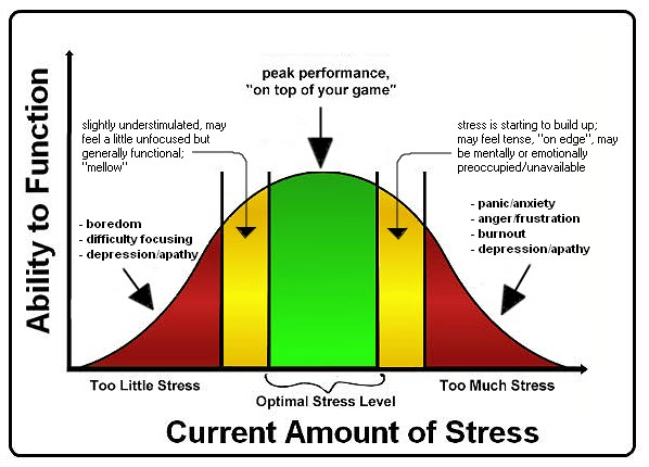 Stress Management By Cheybitter Infographic