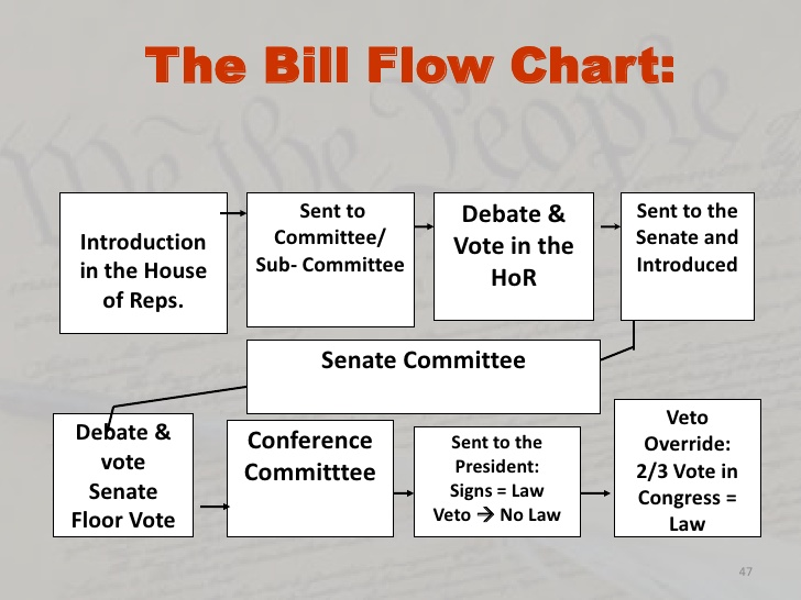 Mr Amutans Hw And Info Blog How A Bill Becomes A Law