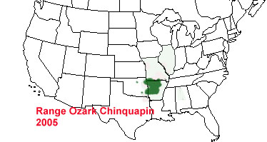 Ozark Chinquapin By JACOB BREWER Infographic - Ozark plateau on us map