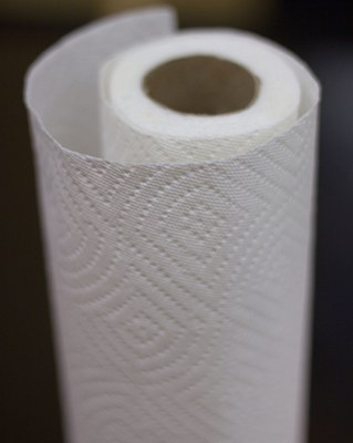 paper towel.  Paper Towels by Danny Hata Infographic