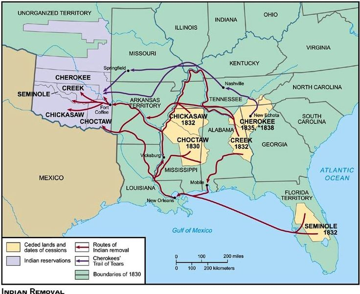 trail of tears new  by liz montreuil Infographic