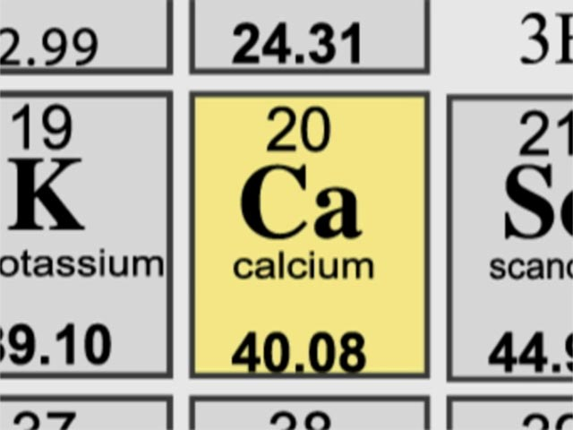 Calcium By Johannely Salazar Infographic