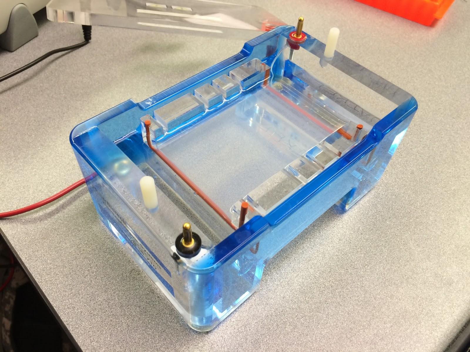 agarose gel electrophoresis