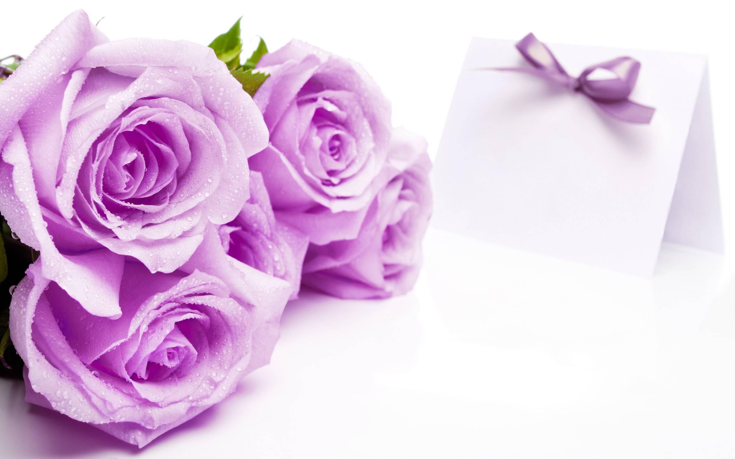 Veronica flower shop calgary by veronica flower shop infographic flowers for birthday wedding valentine frendship congratulations love romance sympthy get well soon anniversary izmirmasajfo