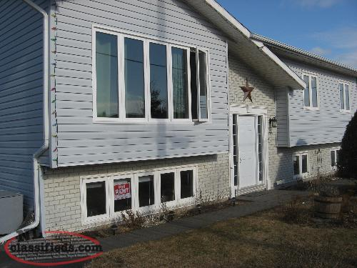 FOR RENT-1 Bedroom Basement APARTMENT