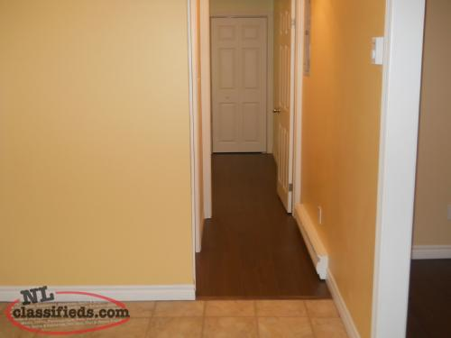 Apartments For Rent In Springdale Nl