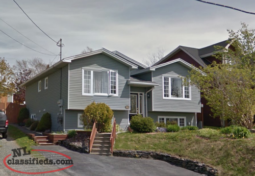 Pet Friendly Apartments For Rent In St Johns Nl