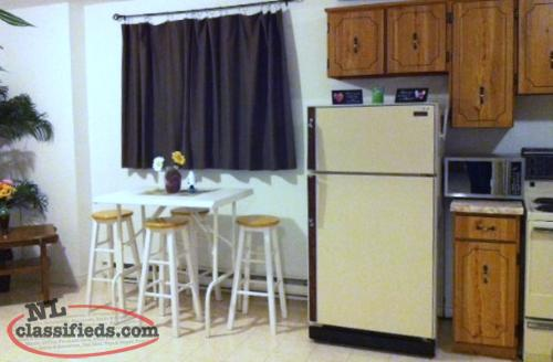 Furnished 1 bedroom apartment - ALL Utilities Included