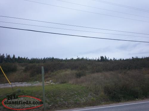 For Sale 1.382 Acres of Ocean View Land (+ trees)