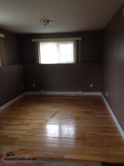 2 Bedroom Above Ground Basement Apt for rent in Torbay