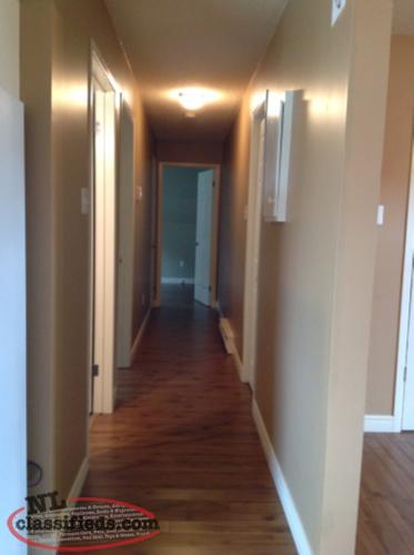 Two Bedroom Basement Apartment For Rent Torbay Newfoundland Labrador Nl Classifieds