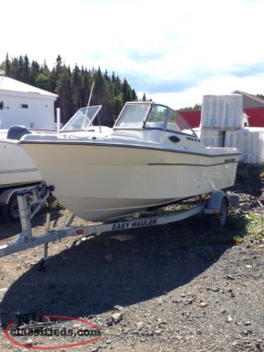 NEW 2017 198 WT Coastal Boat With 115 HP Evinrude Engine and Galvanized Trailer