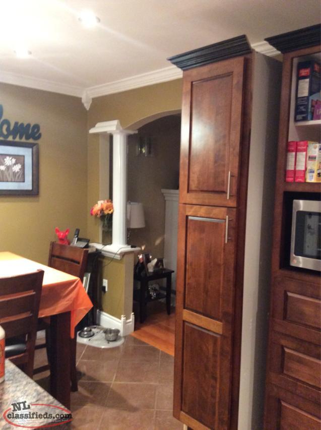 Single kitchen cabinet conception hr newfoundland for Single kitchen cabinet