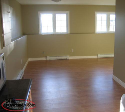 Apartment Rental Ads: 2 Bedroom Basement Apartment For Rent