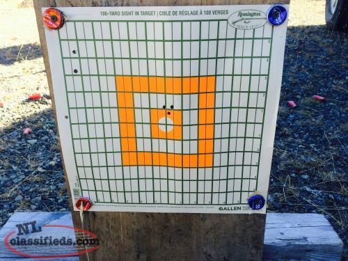 Remington r9100