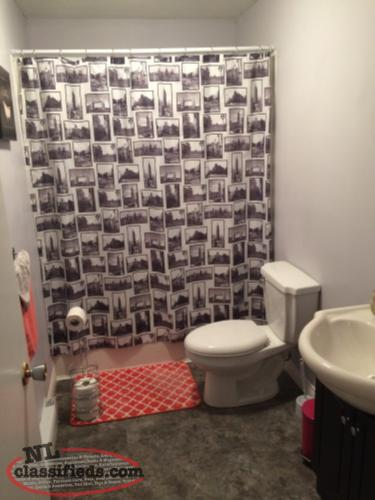 renovated 1 bedroom basement apartment utilities included goulds