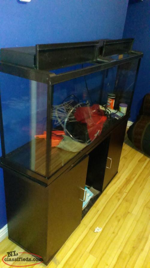55 gallon fish aquarium and stand st john 39 s newfoundland for 55 gallon fish tank lid