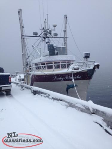 Inshore fishing opportunity springdale newfoundland for Who sells fishing license near me