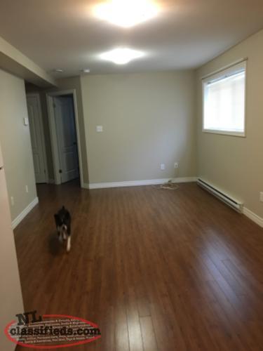 for rent 2 bedroom basement apartment paradise newfoundland
