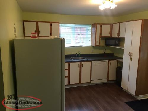 two bedrooms basement apartment for rent cbs newfoundland