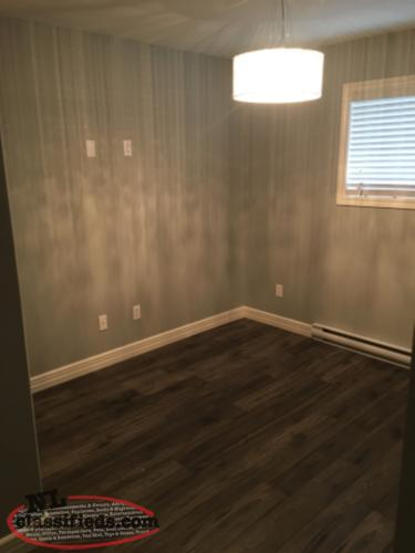 2 bedroom basement apartment conception bay south