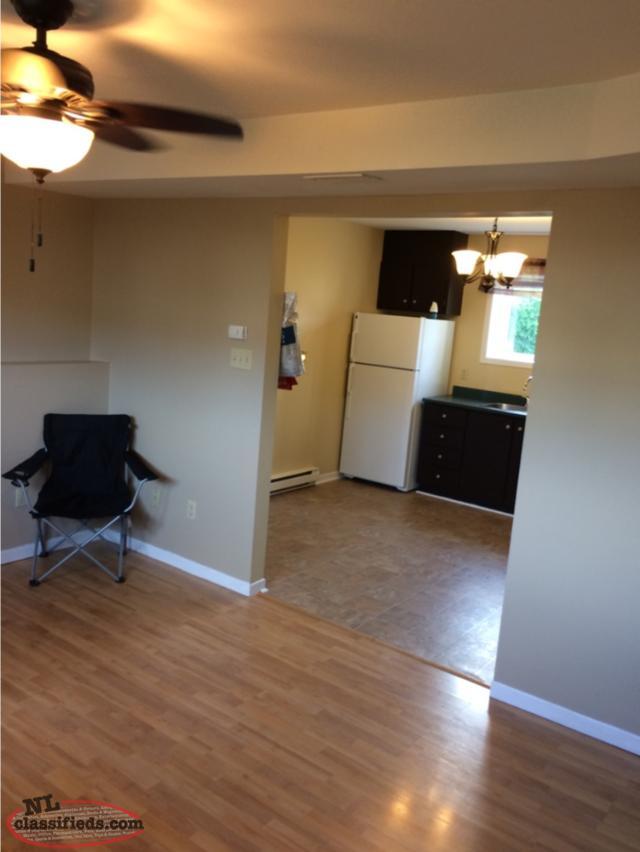 2 bedroom basement apartment for rent st john 39 s newfoundland labrador. Black Bedroom Furniture Sets. Home Design Ideas