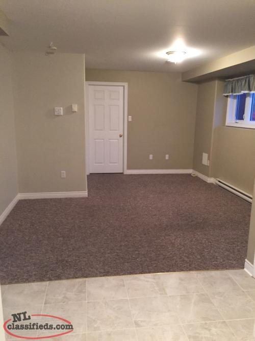 Spacious beautiful 2 bedroom apartment with washer and dryer