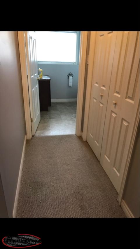 Available Now One Bedroom Apartment In Kilbride Newfoundland Labrador Nl Classifieds