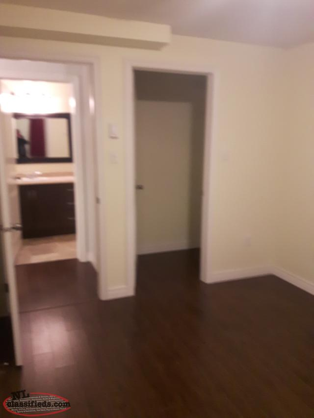 Spacious 2 bedroom apartment for rent st johns for 2 bedroom apartment for rent