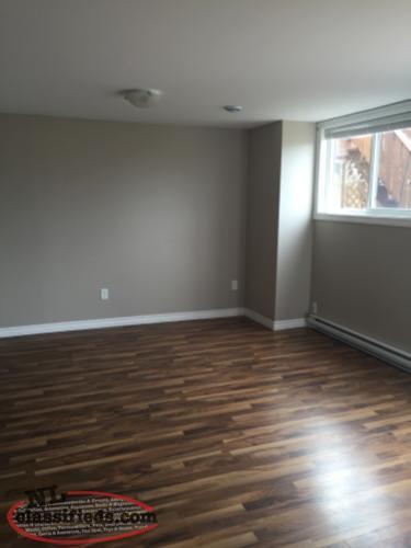 1 Bedroom Basement Apartment Paradise Newfoundland Labrador Nl Classifieds