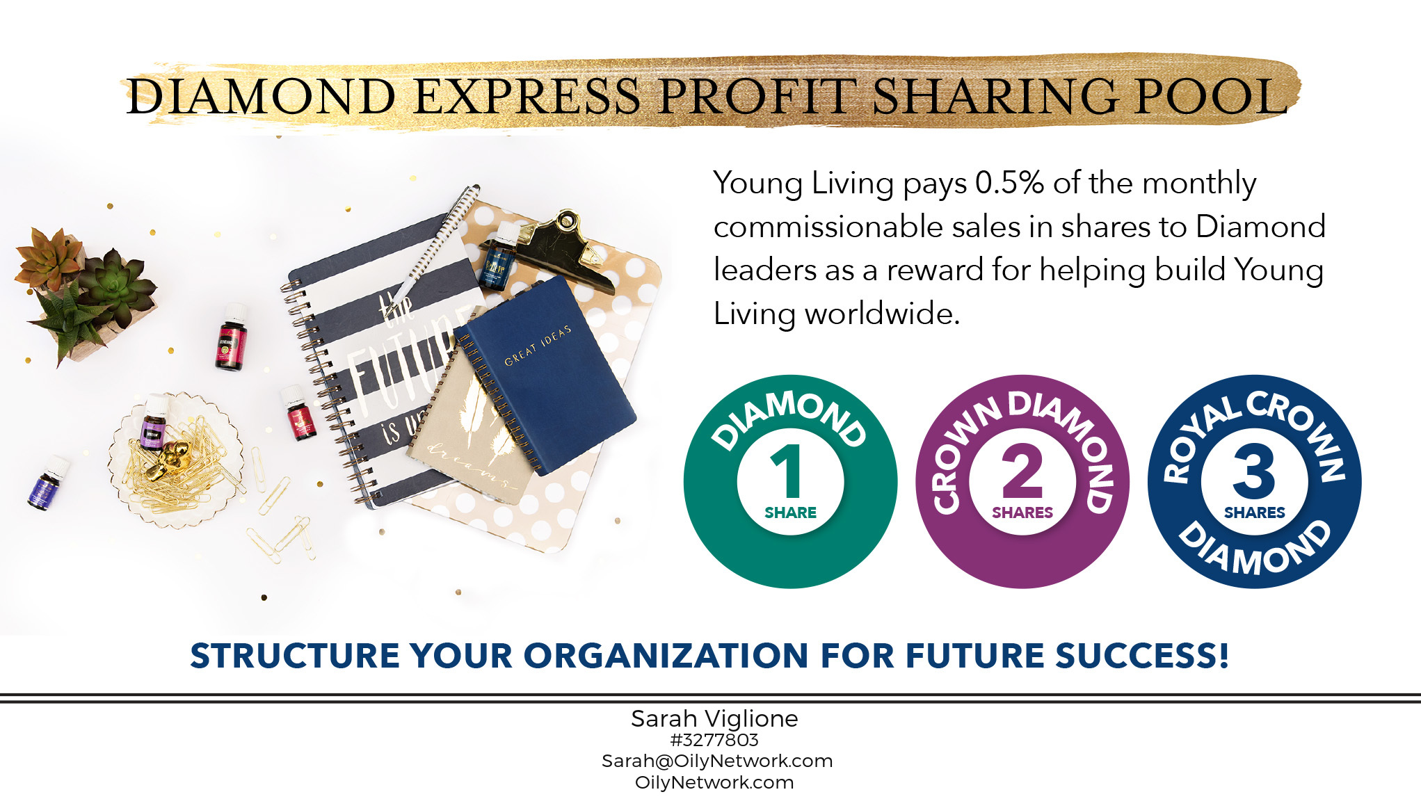 Diamond Express Profit Sharing Pool