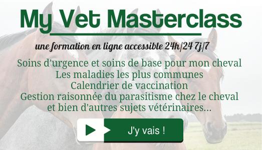 My Vet Masterclass : formation en ligne sur les soins d'urgence