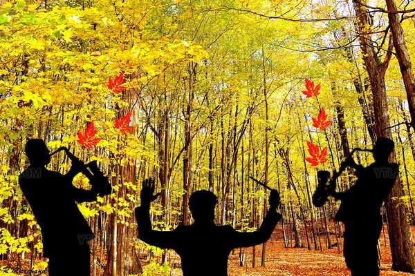 Air d'automne.