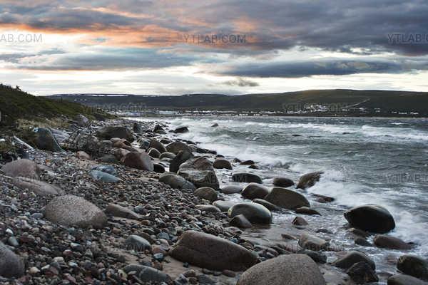 Labrador Windy Shore