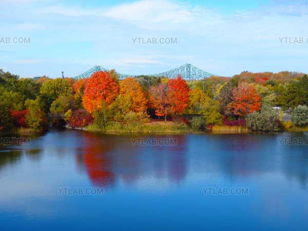 Autumn Montreal II