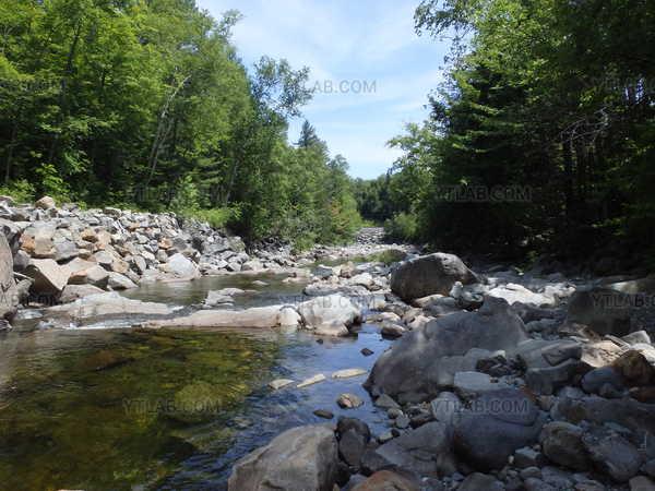 A mountain stream